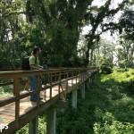 Parque Eco-arqueológico Los Naranjos del Lago de Yojoa