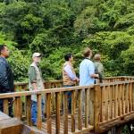 Torre de avistamiento de aves en Panacam.