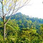 Parque Nacional Cerro Azul Meámbar, Panacam.