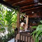 Bienvenido a la naturaleza de Café San Rafael / Welcome to nature at Café San Rafael.