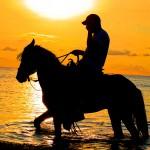Los paseos a caballo son muy relajantes en Roatán.