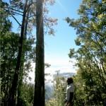 Cerro Las Minas, el punto más alto de Honduras.