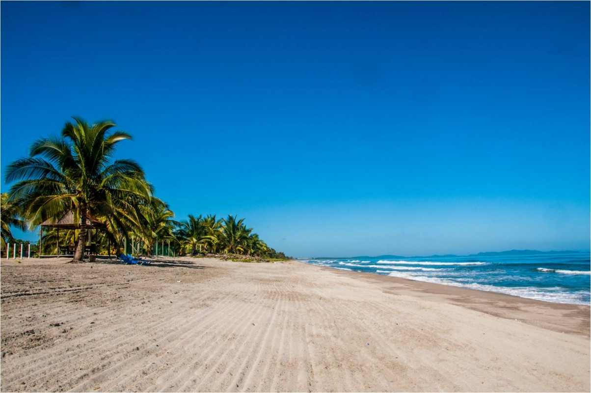 honduras shores plantation honduras tips On playas de tela atlantida honduras