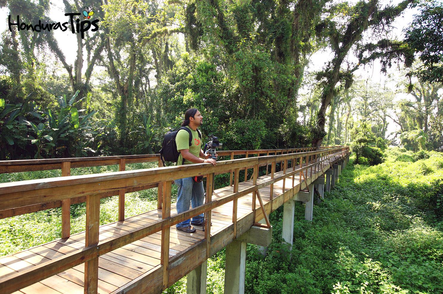 Parque Eco Arqueológico Los Naranjos, Lago de Yojoa.