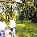 El Jardín Botánico conjuntamente con la Estación Experimental Lancetilla recopiló unas mil variedades de plantas de importancia económica.