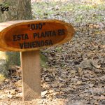 Los senderos y plantas están debidamente señalizados para información del visitante.