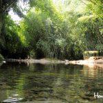 Durante el recorrido, también puede refrescarse en las posas del río Lancetilla. El área está acondicionada sin perder la esencia campestre.