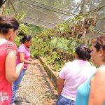 El orquideario fue creado para conservación de las especies de Honduras.