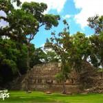 Parque Arqueológico Copán Ruinas