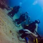Buceo en arrecife Capiro