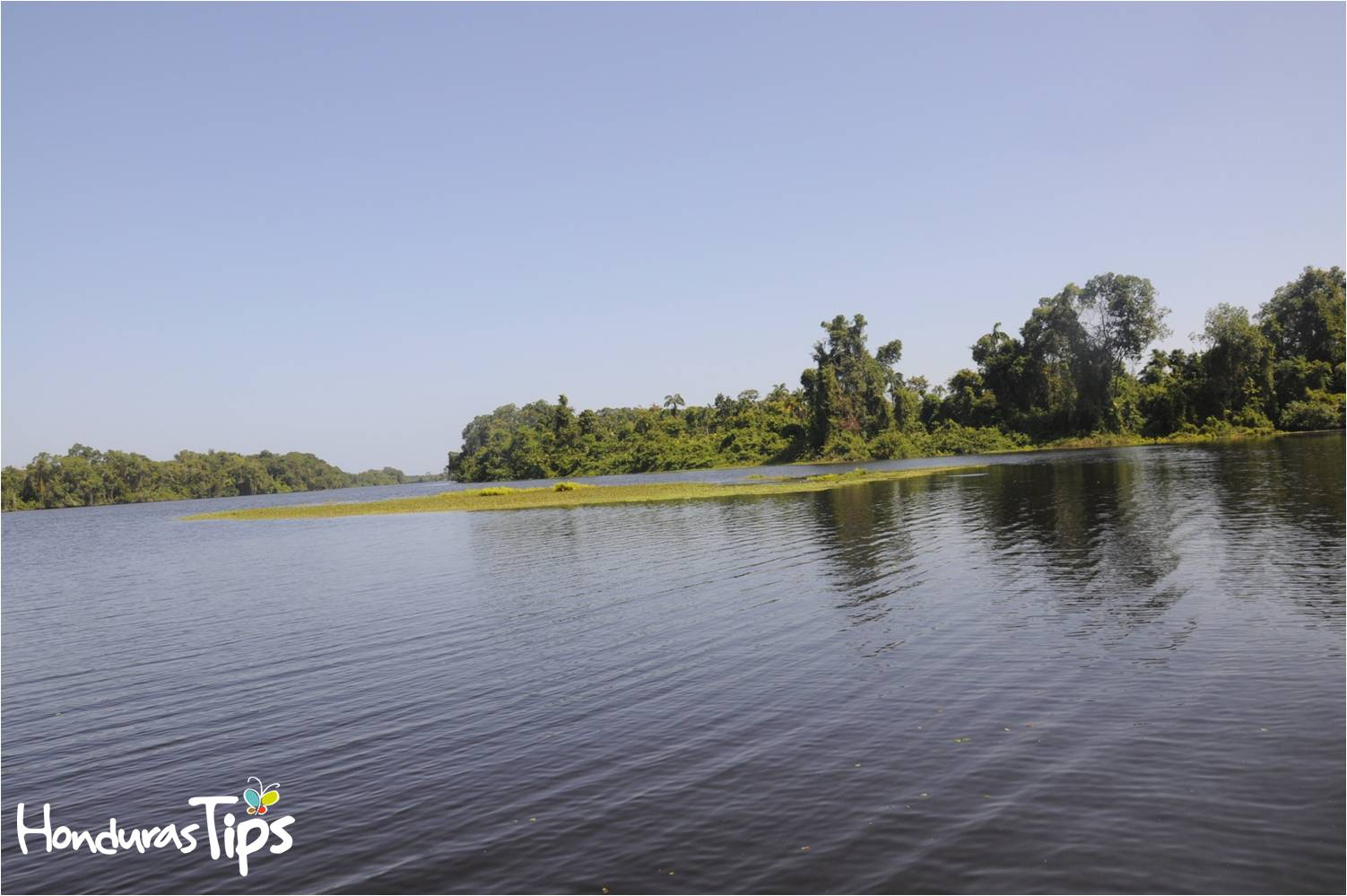 El Refugio de Vida Silvestre Cuero y Salado se divide en dos senderos para recorrer en lancha o canoa: Sendero El Espejo y sendero Boca Cerrada.