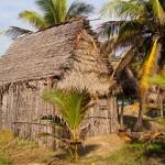 Miami (Comunidad Garífuna/Garifuna community)