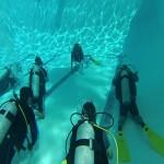 Para quienes desean aprender a bucear, Tourist Options le facilita esta práctica con su escuela certificada en La Ceiba / For those who want to learn to dive, Tourist Options provides a certified school in La Ceiba