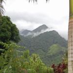 Tourist Options es una tour operadora con muchas opciones por ofrecerle, si gusta de la naturaleza, lo pueden llevar al Parque Nacional Pico Bonito en La Ceiba / Tourist Options is a tour operator with several options, if you like nature, you can visit the Pico Bonito National Park in La Ceiba