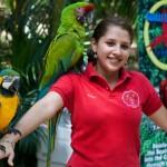 Copán Ruinas le apunta al turismo experiencial