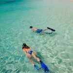 Snorkeling en Roatán