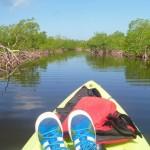 Kayak Utila