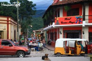 Desde Carnitas Nia Lola hasta el Hotel Camino Maya estará cerrada la calle para el evento.