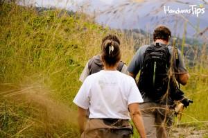 Empaque repelente de insectos y vista de manera apropiada para las zonas que visitará.
