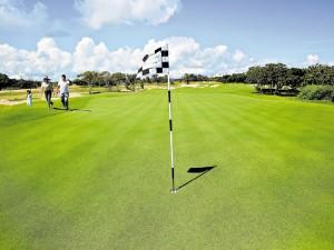 El campo de golf, con una grama especial llamada paspalum platinum, consta de 18 hoyos. (Fotografía: Diario El Heraldo)