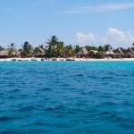 Cayos Cochinos entre los 35 lugares para nadar antes de morir