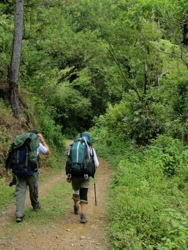 En La Tigra existen ocho senderos por recorrer, y en donde se puede acompañar de helechos o árboles primarios.
