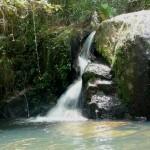 Vertientes de agua dulce son parte del maravilloso escenario forestal del Parque Nacional La Tigra.