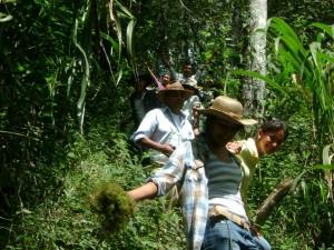Llegar a Campamento es conocer la ruta turística de Café Don Marcos, en la Finca Cara Sucia.