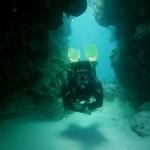 Fifth Element Divers