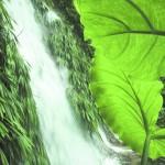 Honduras se expresa sobre beneficios del turismo sostenible para Centroamérica