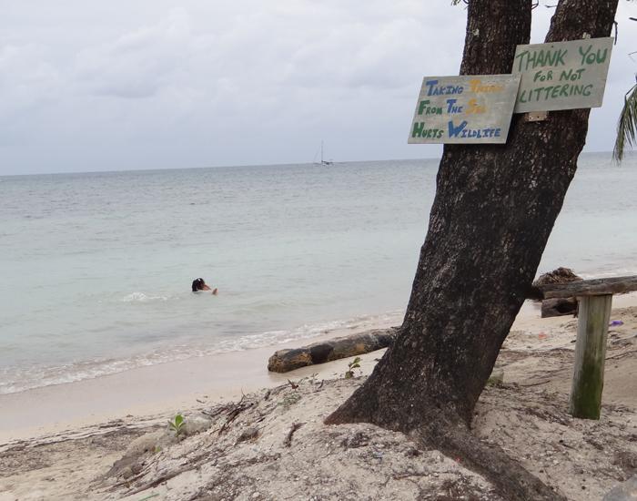 """En los rótulos: """"Llevarse cosas del mar daña la vida silvestre"""" y """"Gracias por no tirar basura""""."""