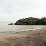 Arrecife coralino único de Tela recibe protección federal