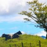 En Honduras, ¡todos los días es Día de la Tierra!