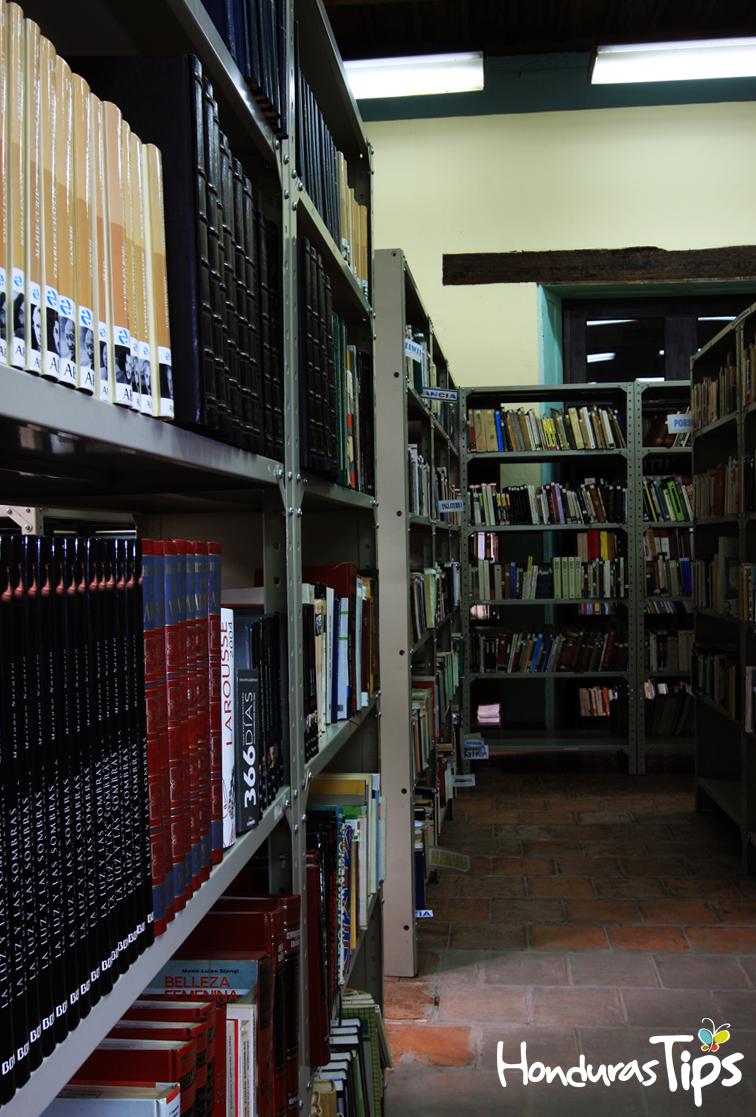 Binah cuenta con una amplia colección de libros y documentos.