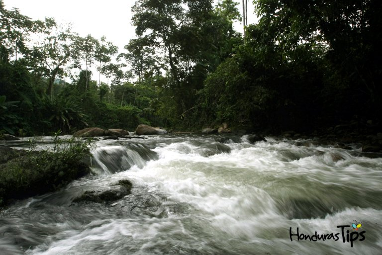 Esta reserva natural cuenta con un ambiente inigualable.
