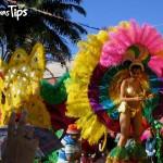 Celebre la que quizá es la fiesta más grande de su tipo, en La Ceiba. La Feria Isidra le espera!