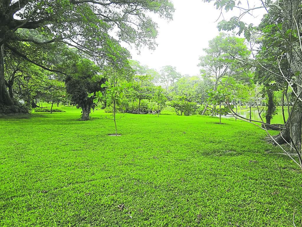 Ya est el terreno para el primer jard n bot nico de san for Jardin botanico san felipe