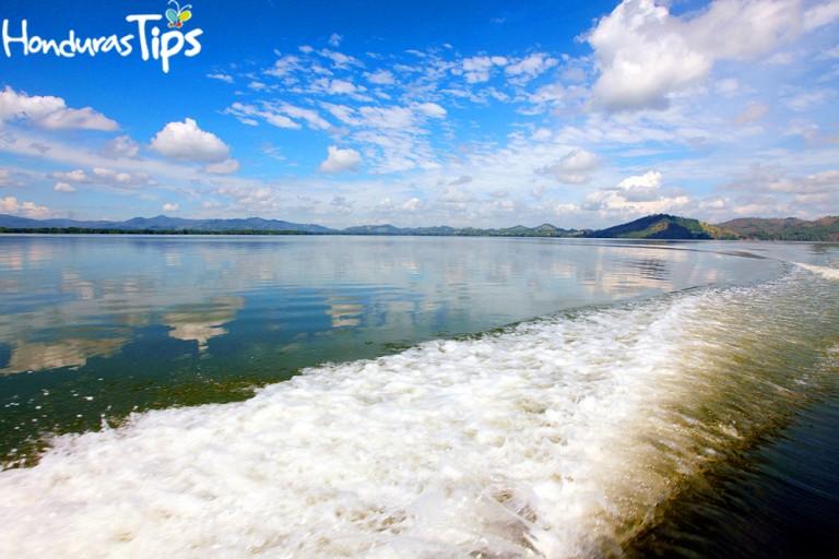 Realice varias excursiones donde pueda visitar la Laguna de los Micos paseando desde una barca por los manglares y observando aves marinas, tortugas, iguanas, monos, lagartos.