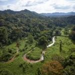Honduras y National Geographic explorarán La Mosquitia