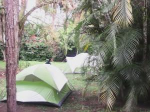 Bioparque Paradise le ofrece 78 hectáreas de naturaleza y mucha arqueología.