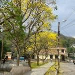 Caminar por las calles de San Nicolás, es recorrer una ruta de tradiciones y costumbres. Foto: Municipalidad de San Nicolás.