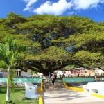 Miles de personas circulan a diario por el parque de la ciudad con los ánimos de tener un momento agradable y fresco. Foto: Municipalidad de San Nicolás.