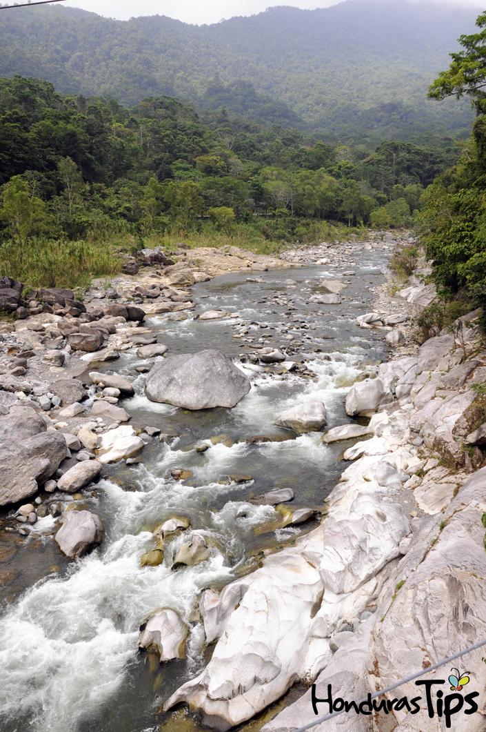 Pico Bonito, uno de los Parques Nacionales más exuberantes de la región, cuenta con una impresionante extensión de bosque a 2,435 msmn.