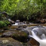 Biosfera es oportunidad de desarrollo para 11 municipios