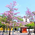 Comayagua, un tesoro colonial de Honduras