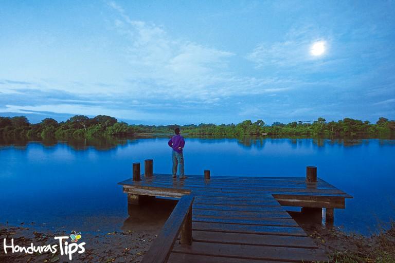 Manglares, lagunas, esteros, costas y 13,215 hectáreas de pantanos forman una rica biodiversidad en la desembocadura de los ríos Cuero y Salado.