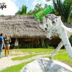 Desde 2003, Sambo Creek Canopy Tour le atiende específicamente para que disfrute de la adrenalina del canopy y luego se relaje en las aguas termales / Since 2003, Sambo Creek Canopy Tour caters specifically to  the enjoyment of adrenaline of the canopy and relaxation in the hot springs