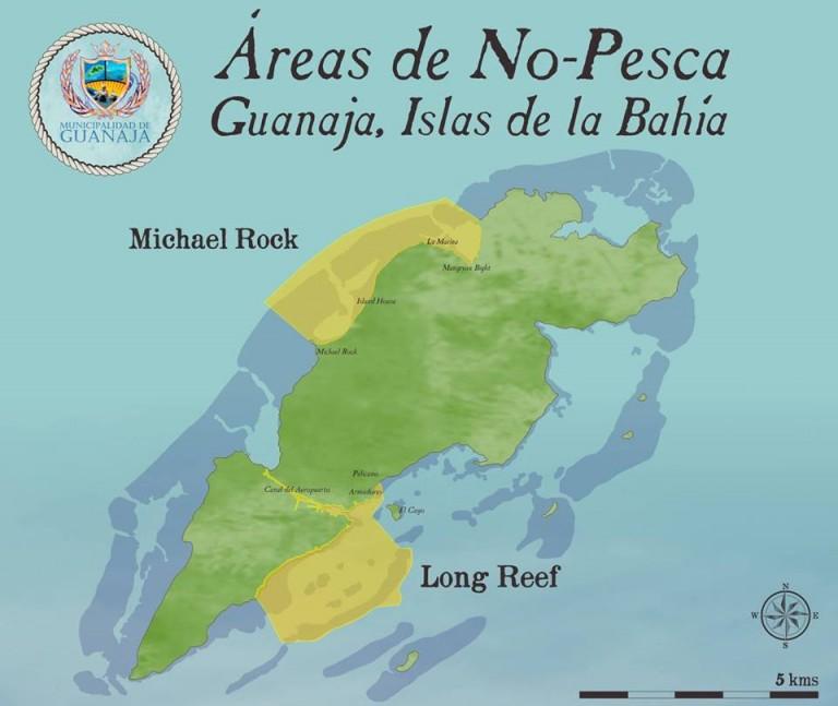 """Las """"área de no-pesca"""" son espacios marinos óptimos para la reproducción, crianza y refugio de especies marinas."""