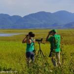 Contarán y registrarán aves en el Lago de Yojoa ¡únase a esta actividad!