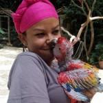 Myurial Ferrera, se ha encardado por muchos años en cuidar las aves que las personas donan en Macaw Mountain.